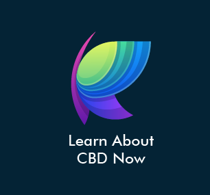 Everything You Need to Know About CBD Now!